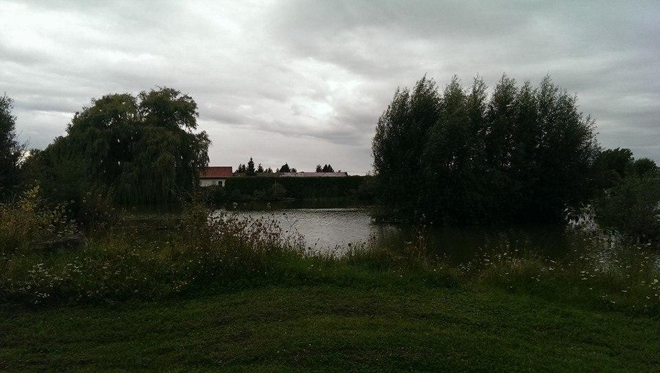 image133